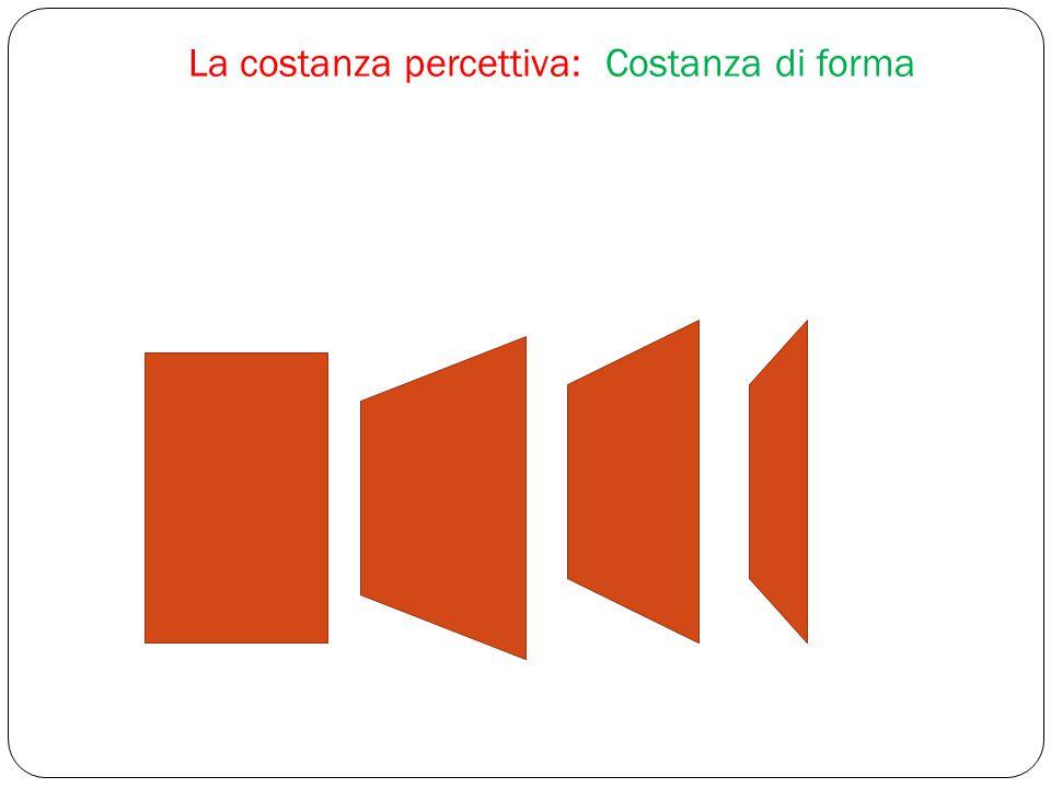 La costanza percettiva: Costanza di forma