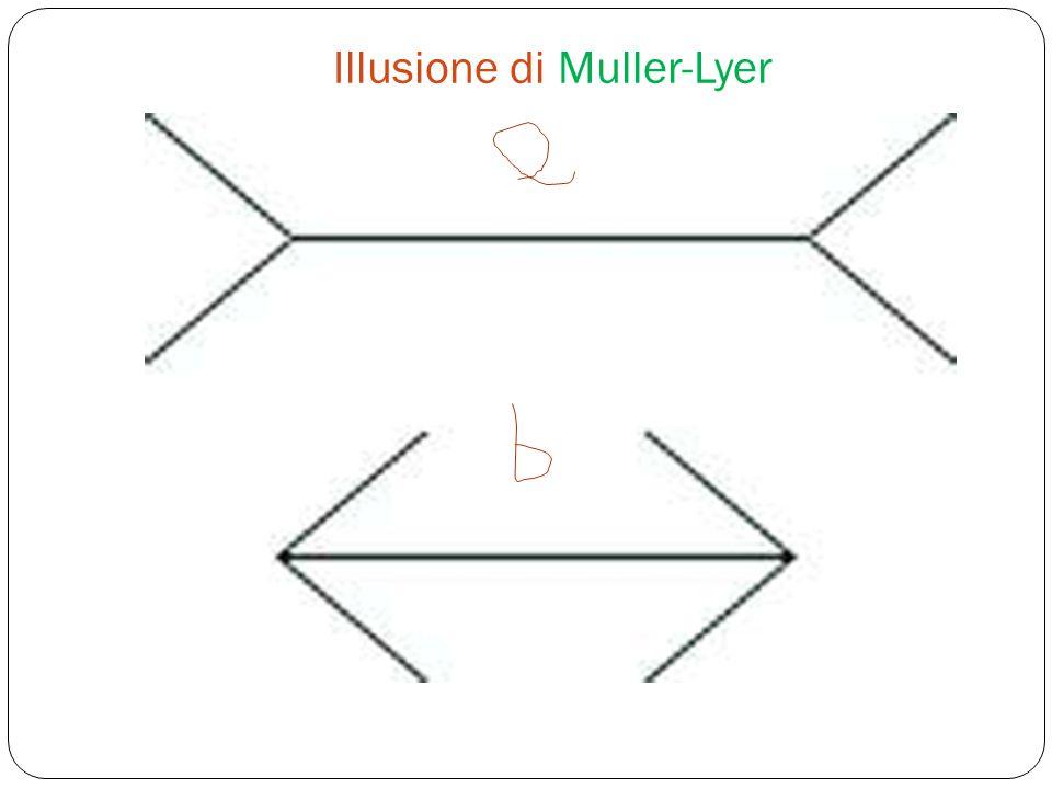 Illusione di Muller-Lyer
