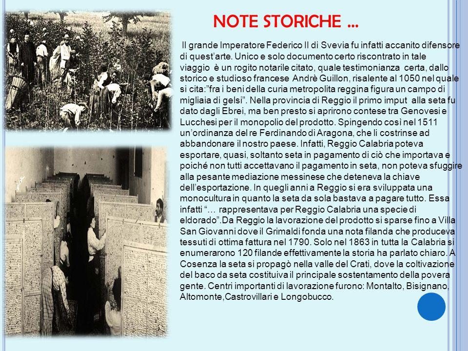 NOTE STORICHE …