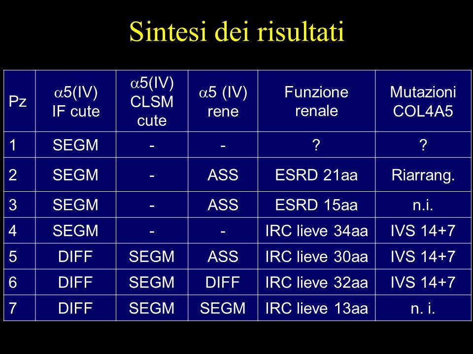 Sintesi dei risultati Pz 5(IV) IF cute 5(IV) CLSM cute 5 (IV) rene
