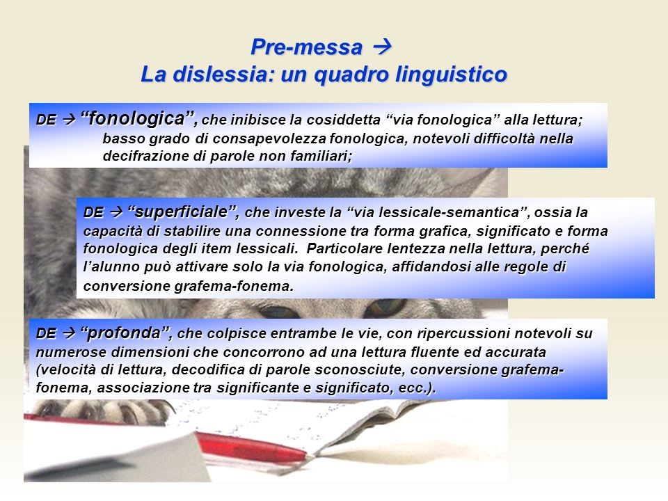 La dislessia: un quadro linguistico