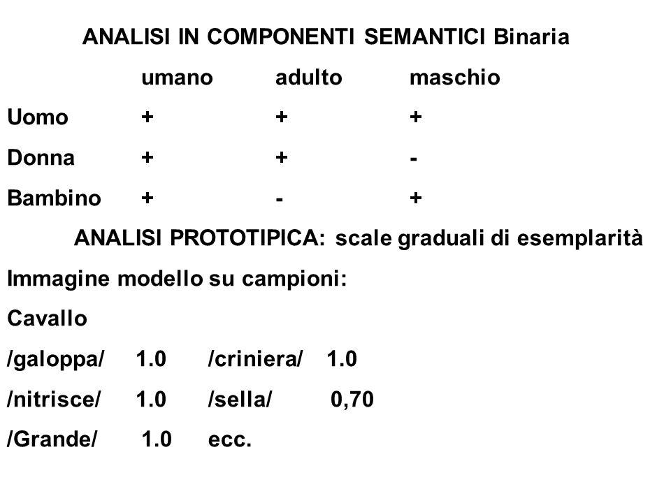 ANALISI IN COMPONENTI SEMANTICI Binaria