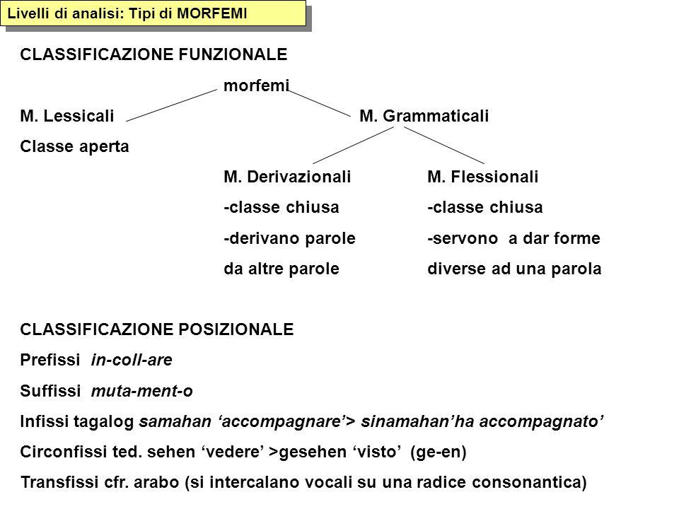 CLASSIFICAZIONE FUNZIONALE morfemi M. Lessicali M. Grammaticali
