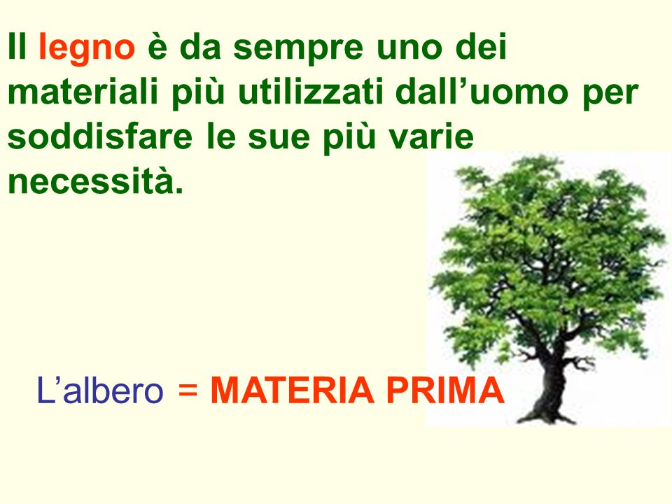 Il legno è da sempre uno dei materiali più utilizzati dall'uomo per soddisfare le sue più varie necessità.