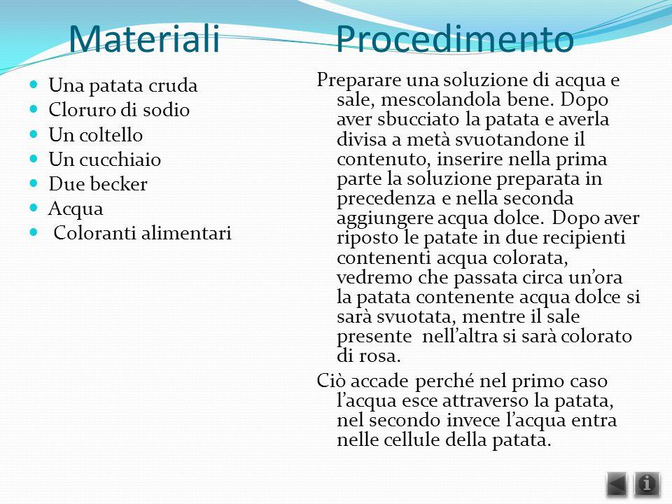 Materiali Procedimento