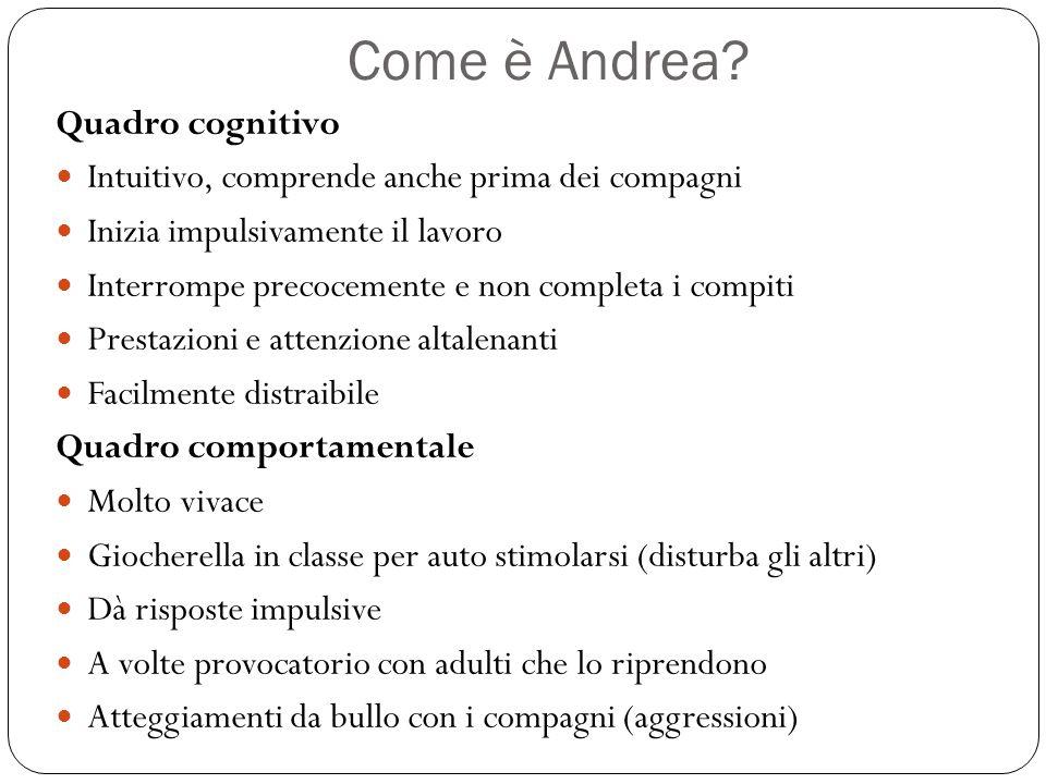 Come è Andrea Quadro cognitivo