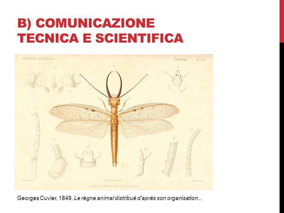b) COMUNICAZIONE TECNICA E SCIENTIFICA
