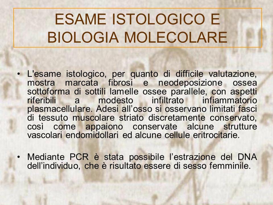 ESAME ISTOLOGICO E BIOLOGIA MOLECOLARE