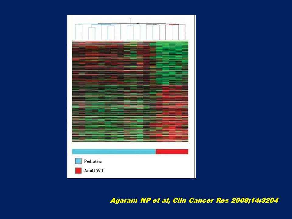 Agaram NP et al, Clin Cancer Res 2008;14:3204