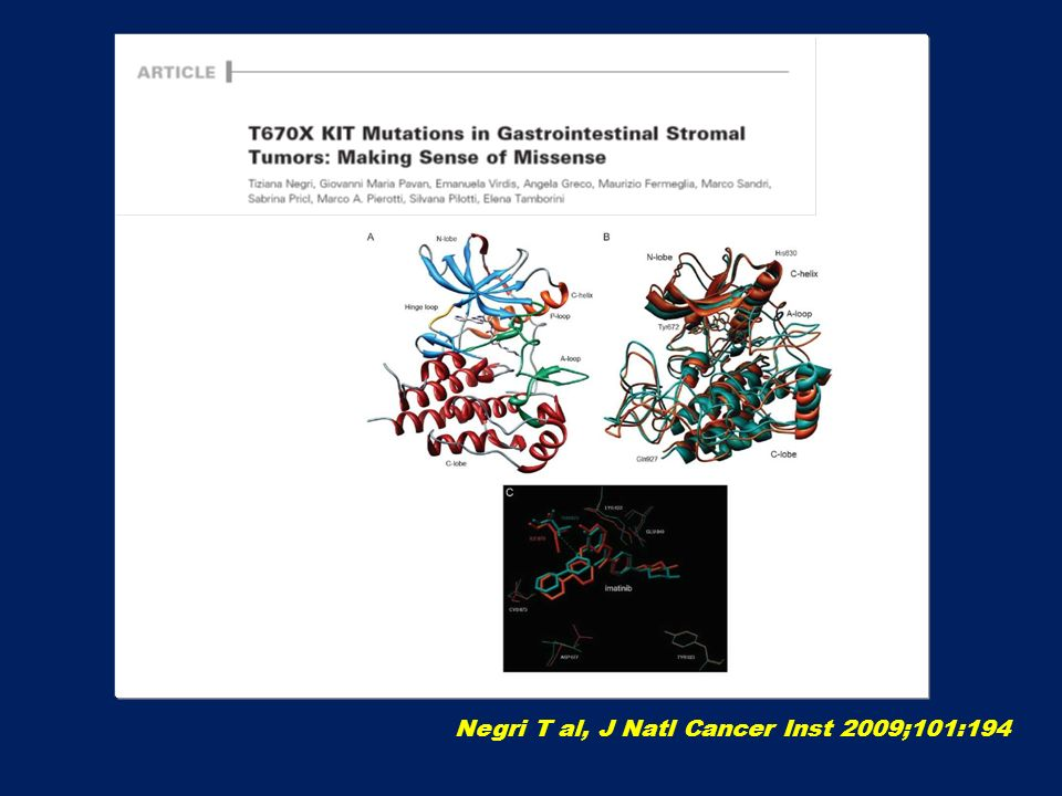 Negri T al, J Natl Cancer Inst 2009;101:194