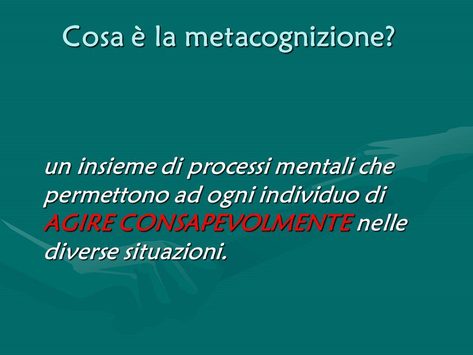 Cosa è la metacognizione