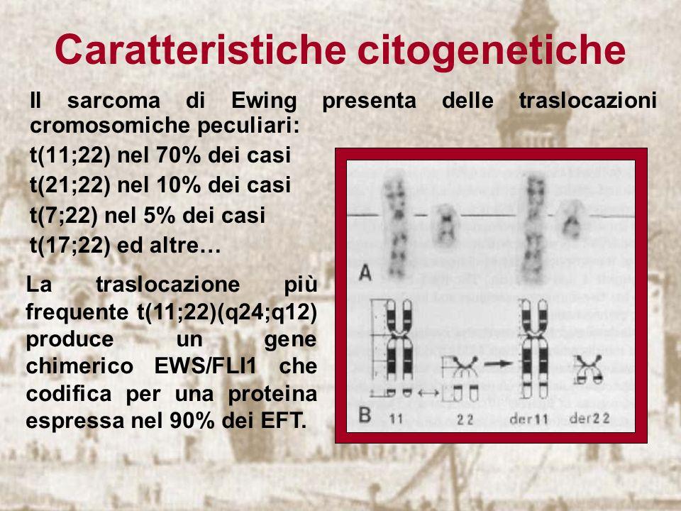 Caratteristiche citogenetiche