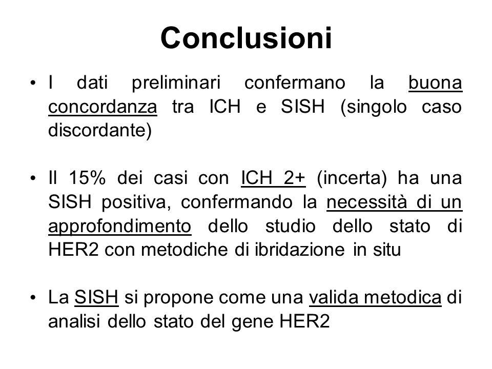 Conclusioni I dati preliminari confermano la buona concordanza tra ICH e SISH (singolo caso discordante)