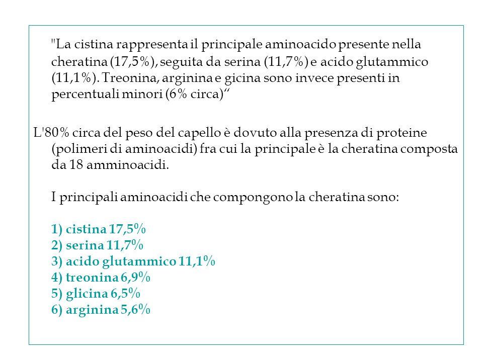 La cistina rappresenta il principale aminoacido presente nella cheratina (17,5%), seguita da serina (11,7%) e acido glutammico (11,1%). Treonina, arginina e gicina sono invece presenti in percentuali minori (6% circa)