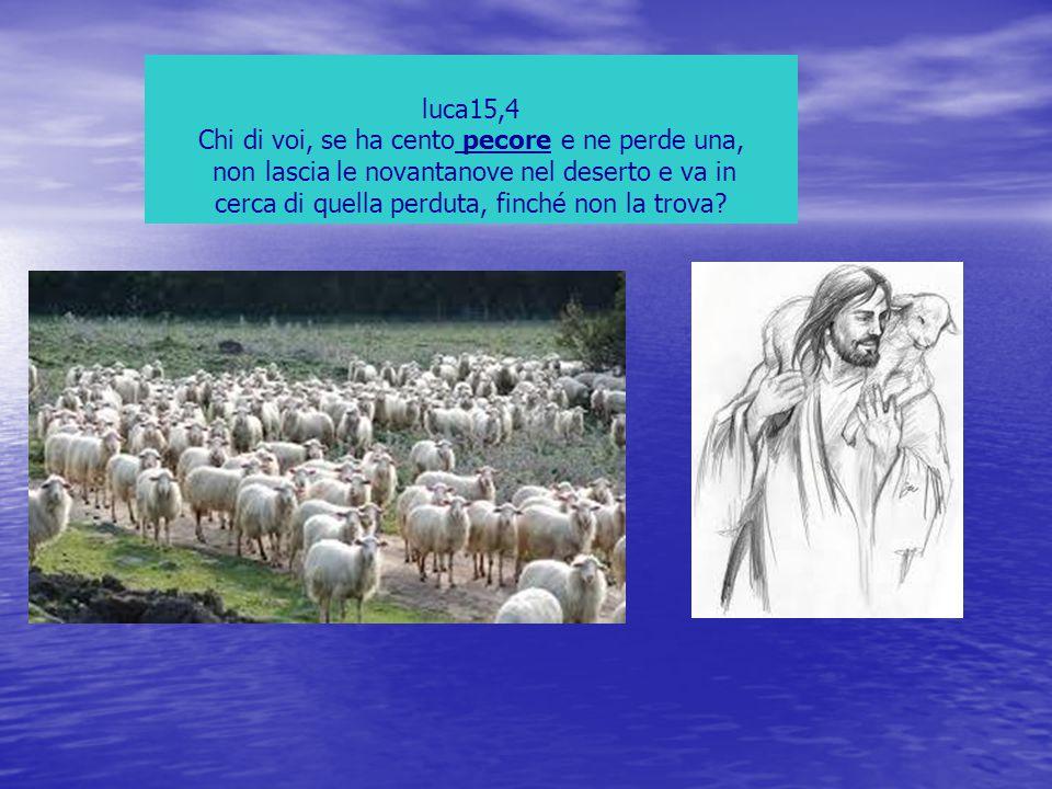 Chi di voi, se ha cento pecore e ne perde una,