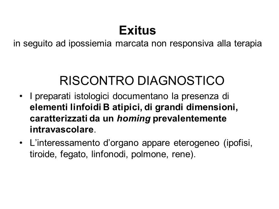 Exitus in seguito ad ipossiemia marcata non responsiva alla terapia