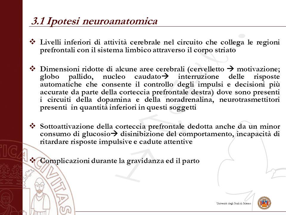 3.1 Ipotesi neuroanatomica