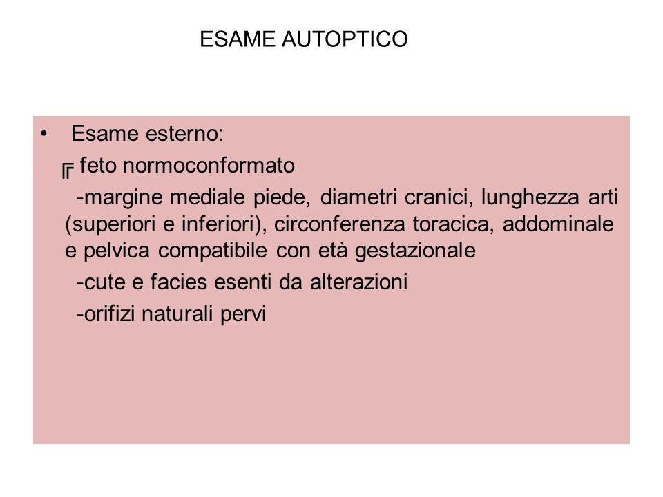 ESAME AUTOPTICO Esame esterno: ╔ feto normoconformato.