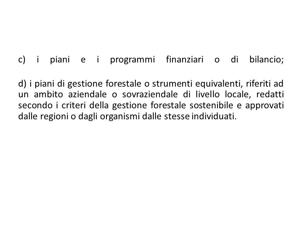c) i piani e i programmi finanziari o di bilancio;