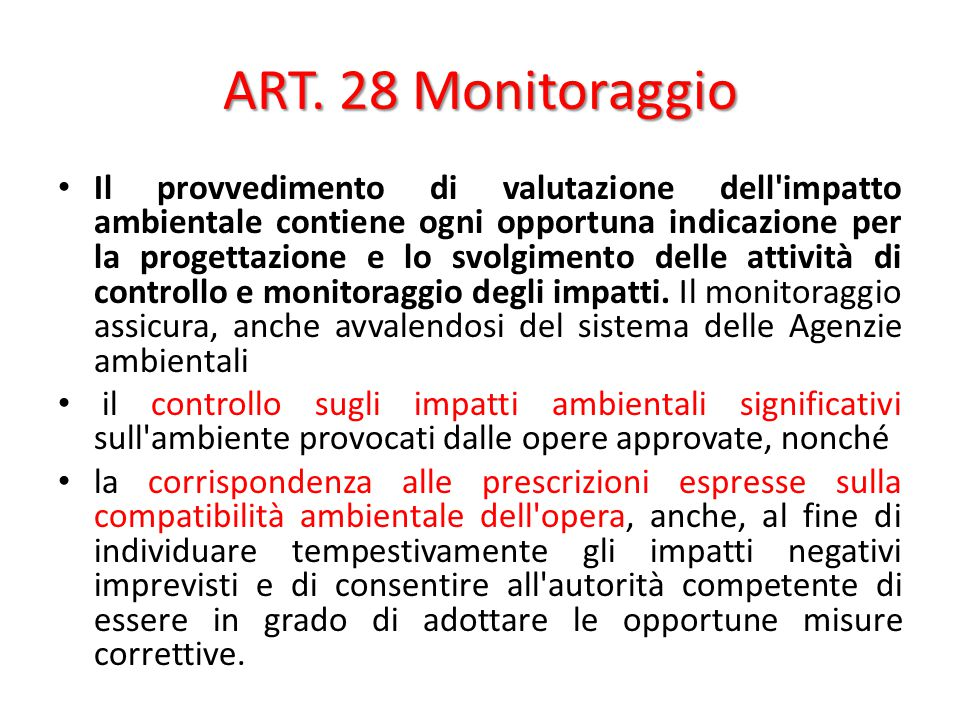 ART. 28 Monitoraggio