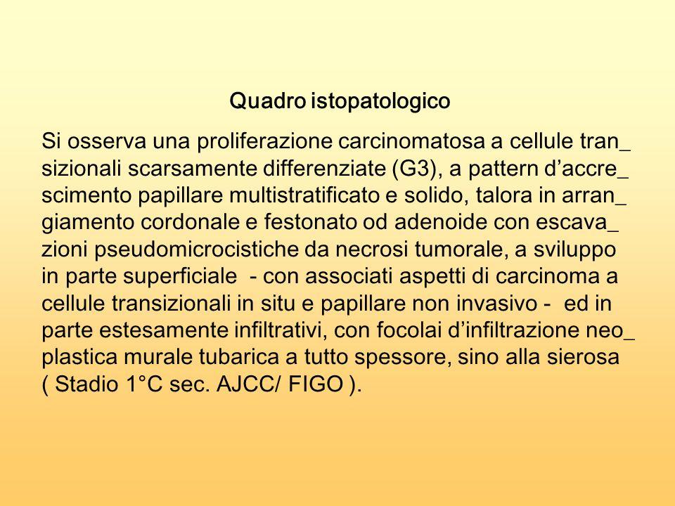 Quadro istopatologico