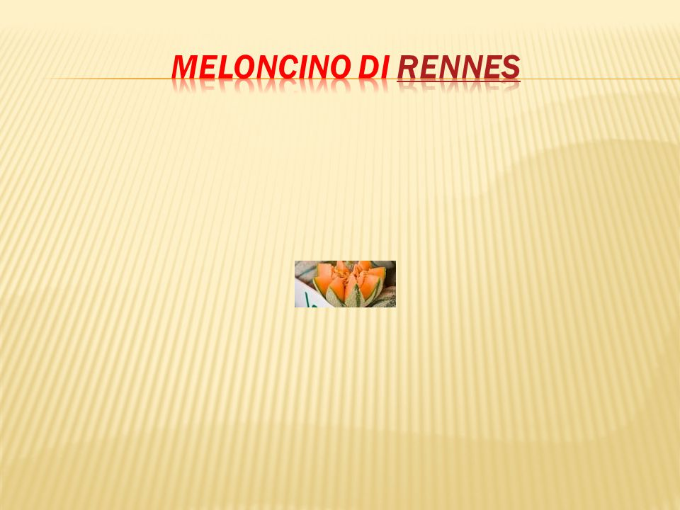 Meloncino di Rennes
