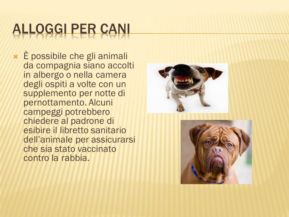 Alloggi per cani