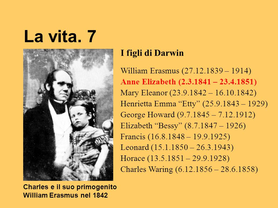 La vita. 7 I figli di Darwin William Erasmus (27.12.1839 – 1914)