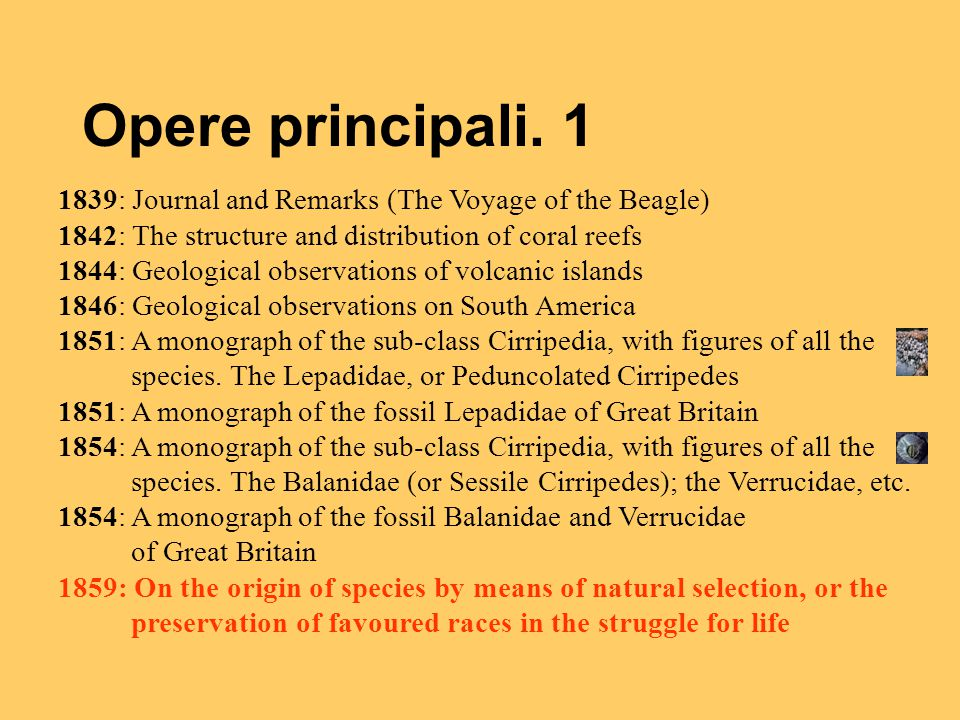 Opere principali. 1 1839: Journal and Remarks (The Voyage of the Beagle) 1842: The structure and distribution of coral reefs.