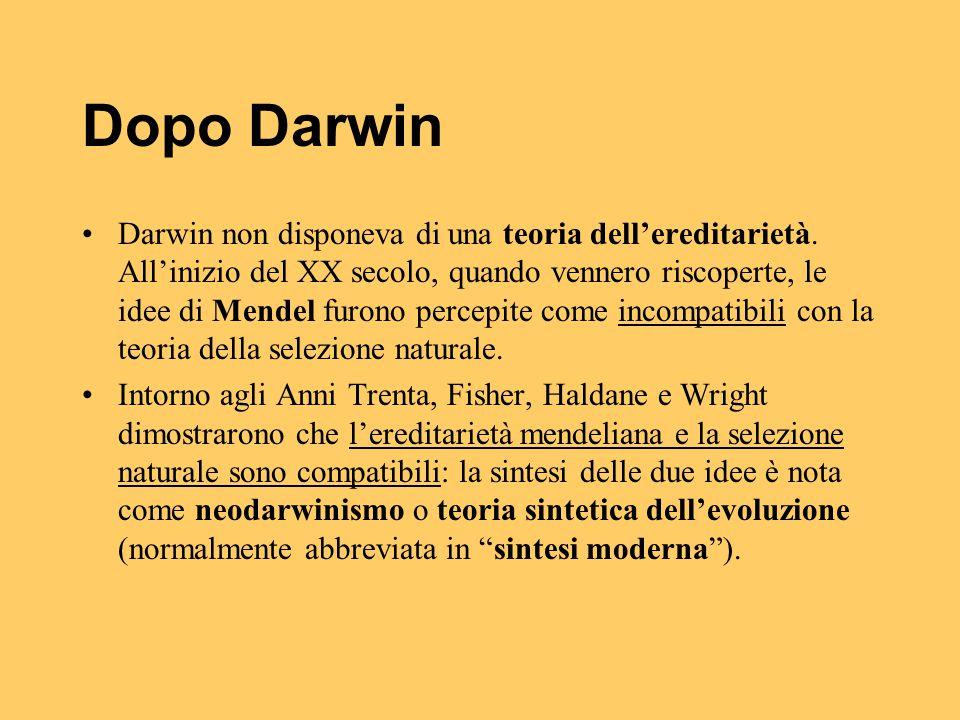 Dopo Darwin