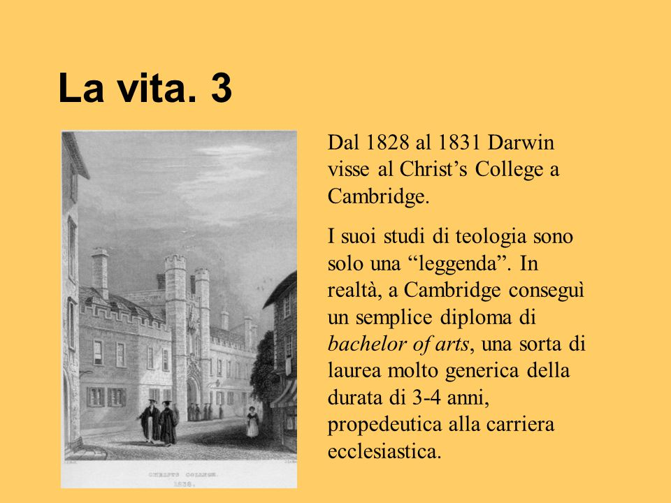La vita. 3 Dal 1828 al 1831 Darwin visse al Christ's College a Cambridge.