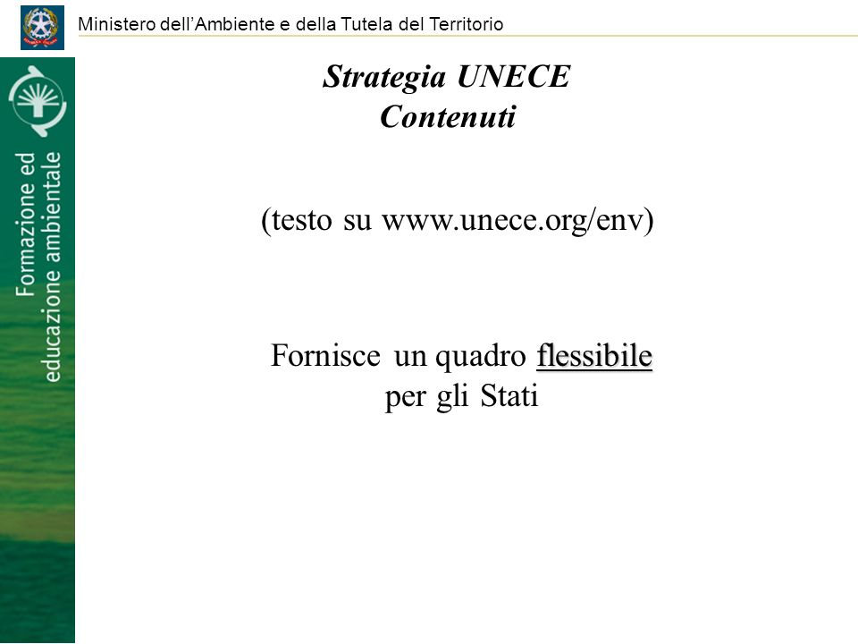 Strategia UNECE Contenuti