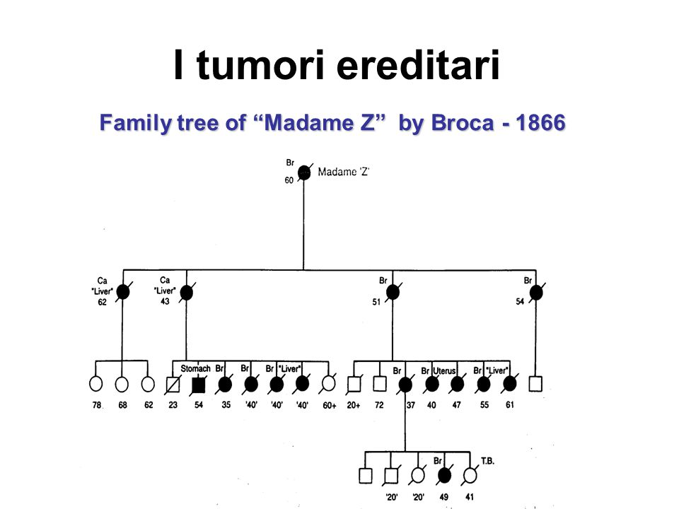 Family tree of Madame Z by Broca - 1866