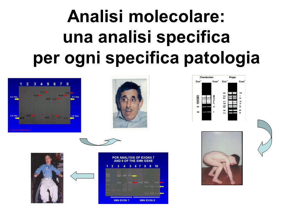 Analisi molecolare: una analisi specifica per ogni specifica patologia