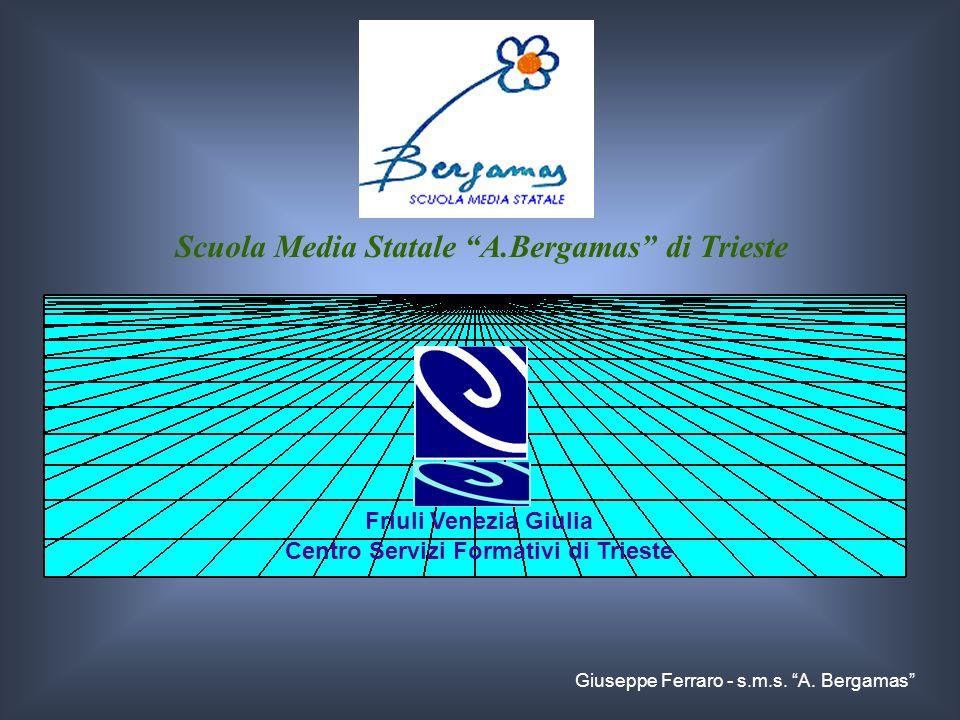 Scuola Media Statale A.Bergamas di Trieste