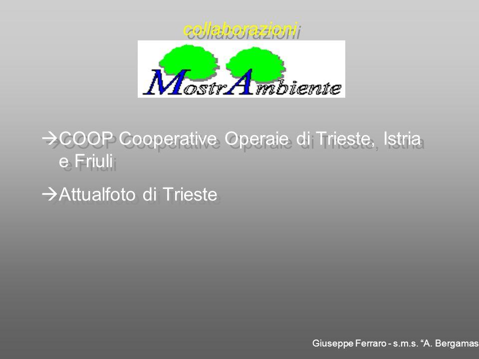 COOP Cooperative Operaie di Trieste, Istria e Friuli