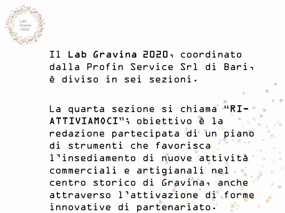 Il Lab Gravina 2020, coordinato dalla Profin Service Srl di Bari, è diviso in sei sezioni.
