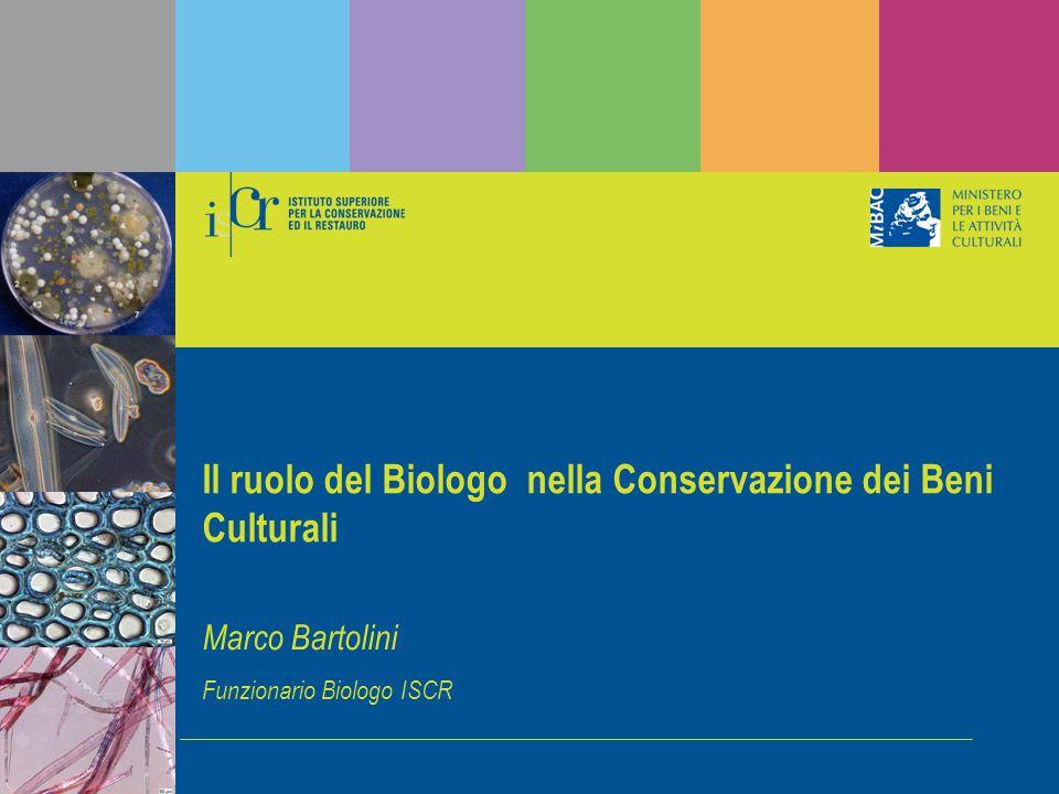 Il ruolo del Biologo nella Conservazione dei Beni Culturali