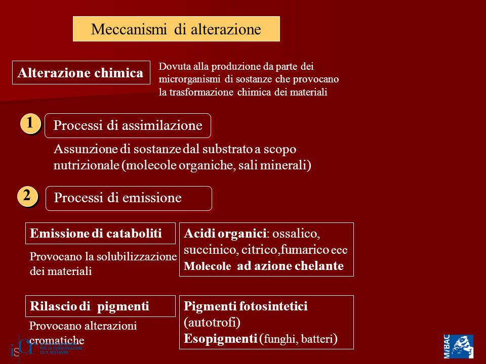 Meccanismi di alterazione