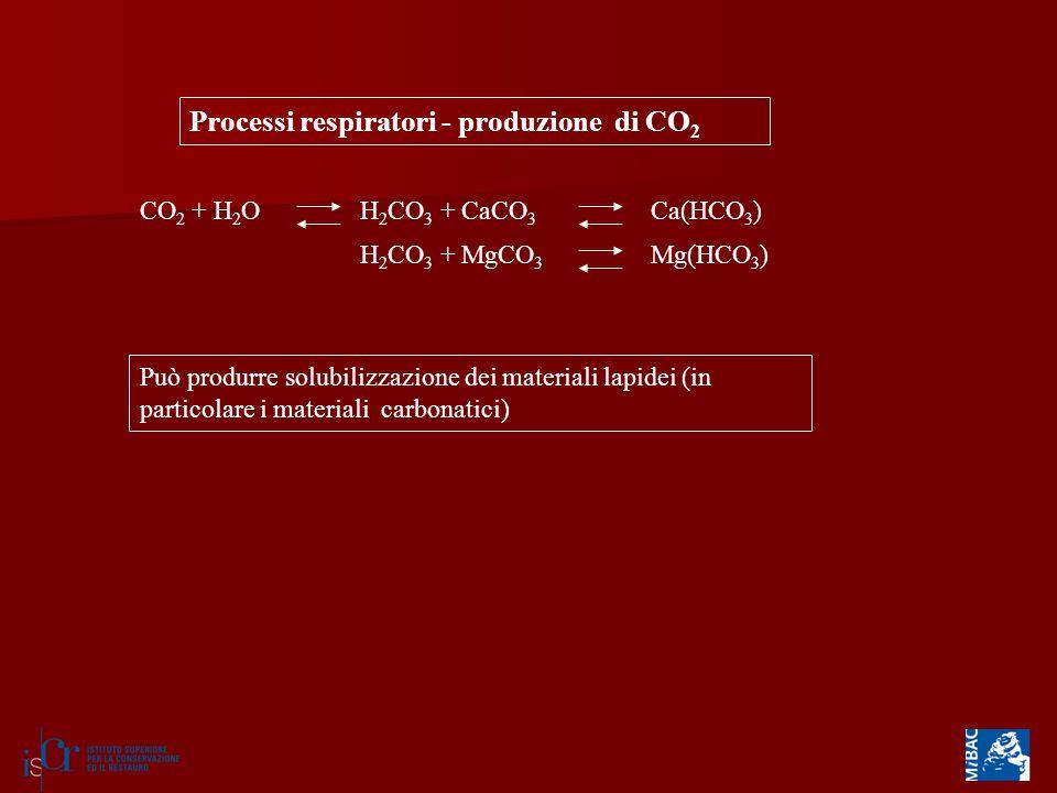 Processi respiratori - produzione di CO2