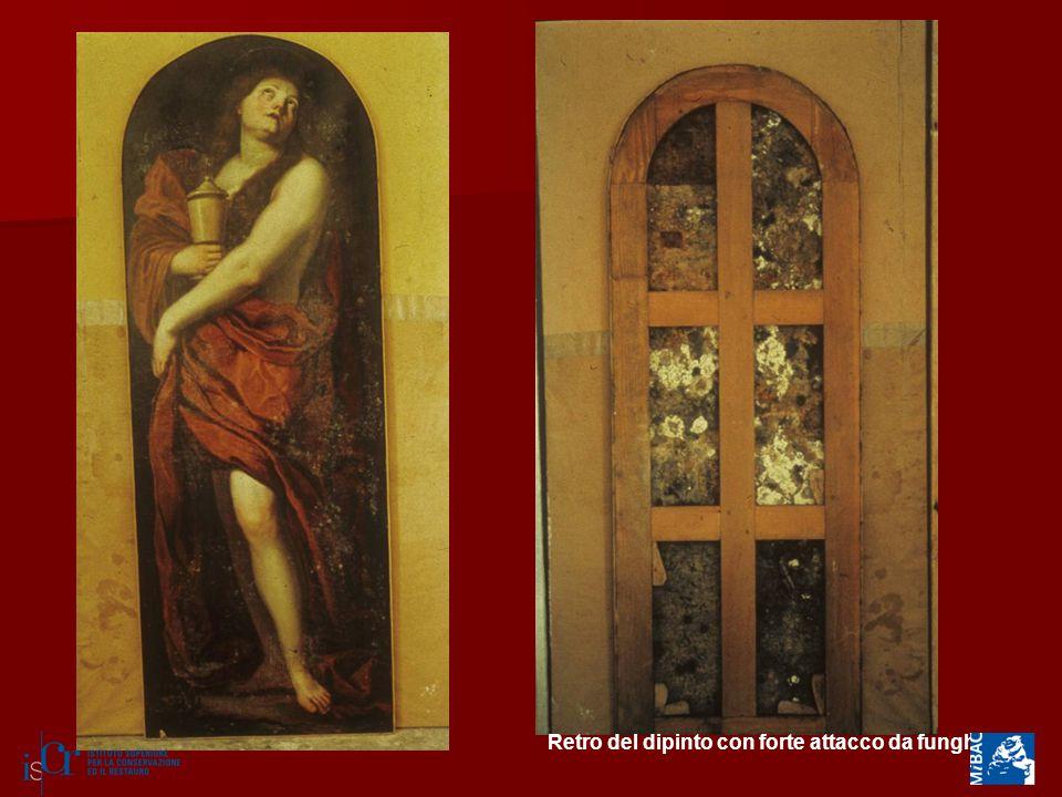 Retro del dipinto con forte attacco da funghi