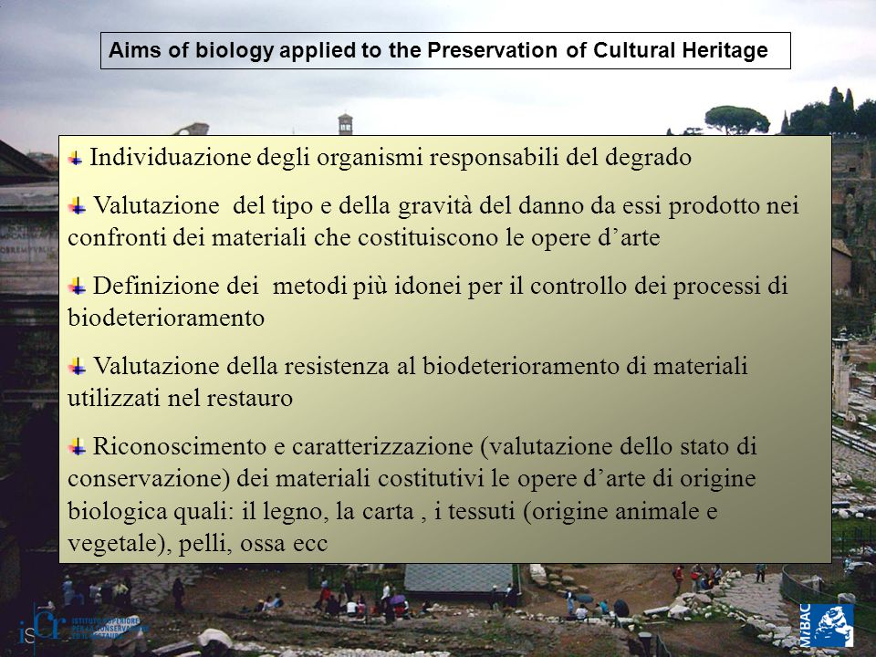 Aims of biology applied to the Preservation of Cultural Heritage