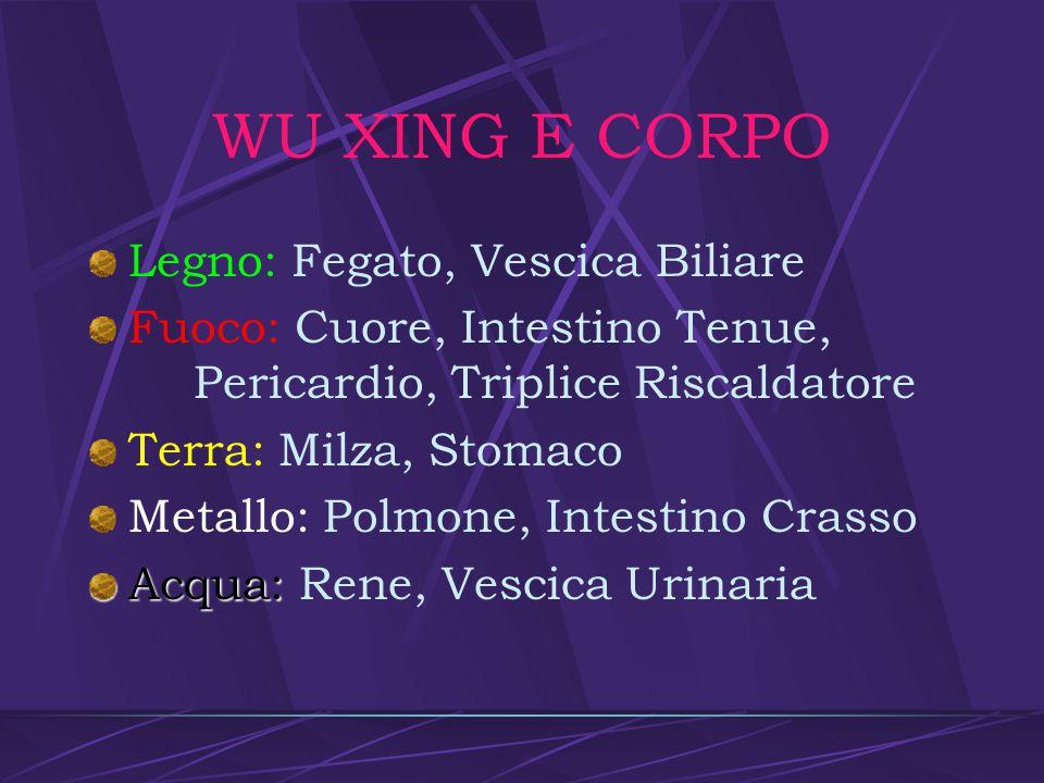 WU XING E CORPO Legno: Fegato, Vescica Biliare