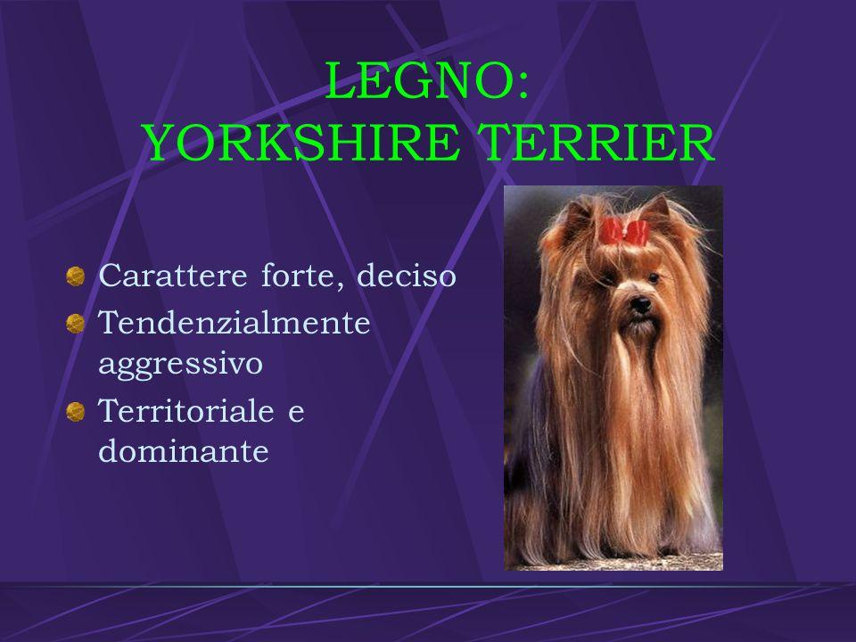 LEGNO: YORKSHIRE TERRIER