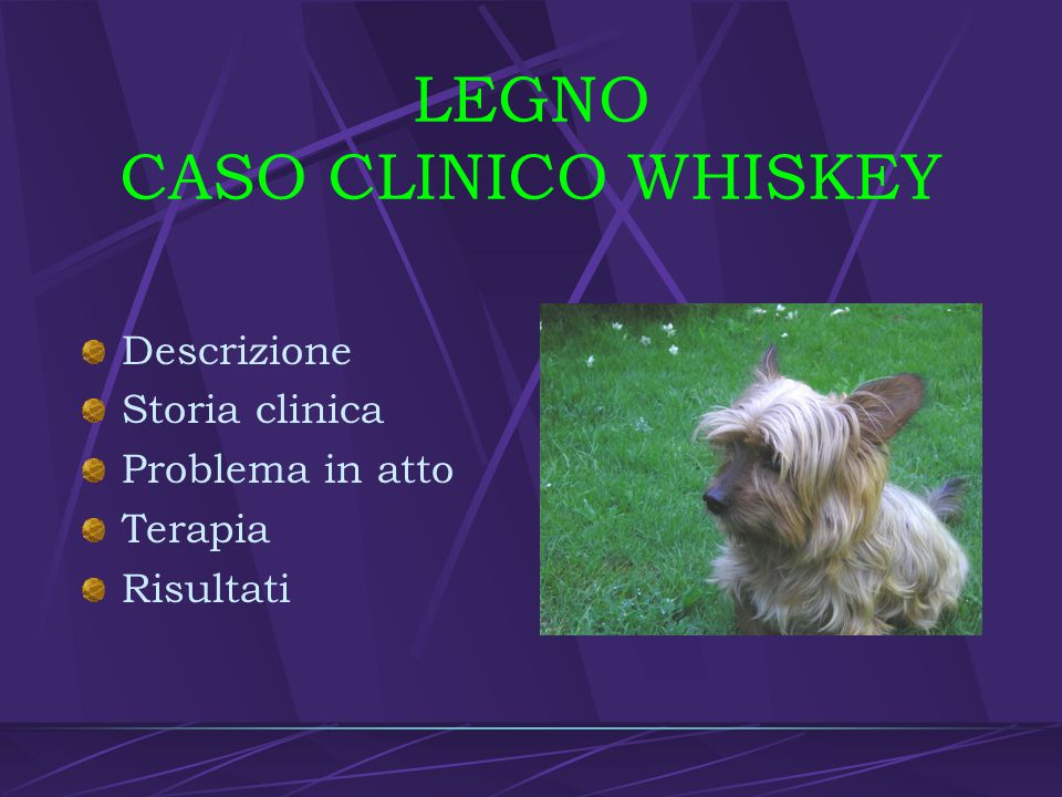 LEGNO CASO CLINICO WHISKEY