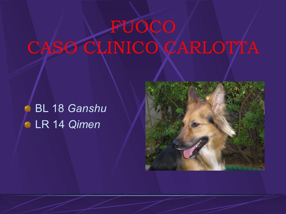 FUOCO CASO CLINICO CARLOTTA
