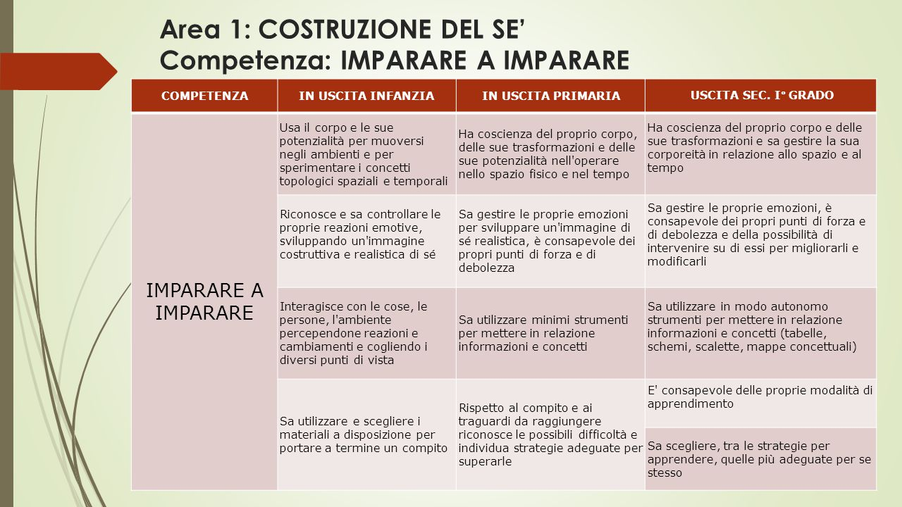 Area 1: COSTRUZIONE DEL SE' Competenza: IMPARARE A IMPARARE