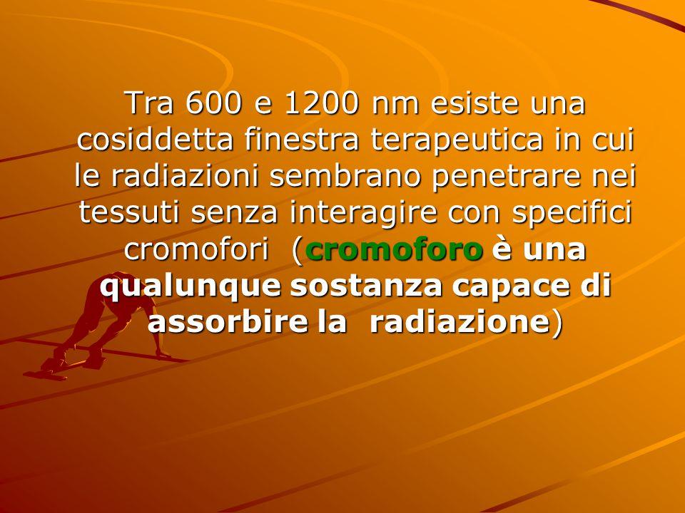 Tra 600 e 1200 nm esiste una cosiddetta finestra terapeutica in cui le radiazioni sembrano penetrare nei tessuti senza interagire con specifici cromofori (cromoforo è una qualunque sostanza capace di assorbire la radiazione)