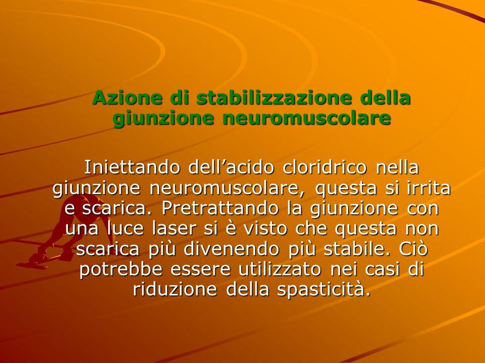 Azione di stabilizzazione della giunzione neuromuscolare