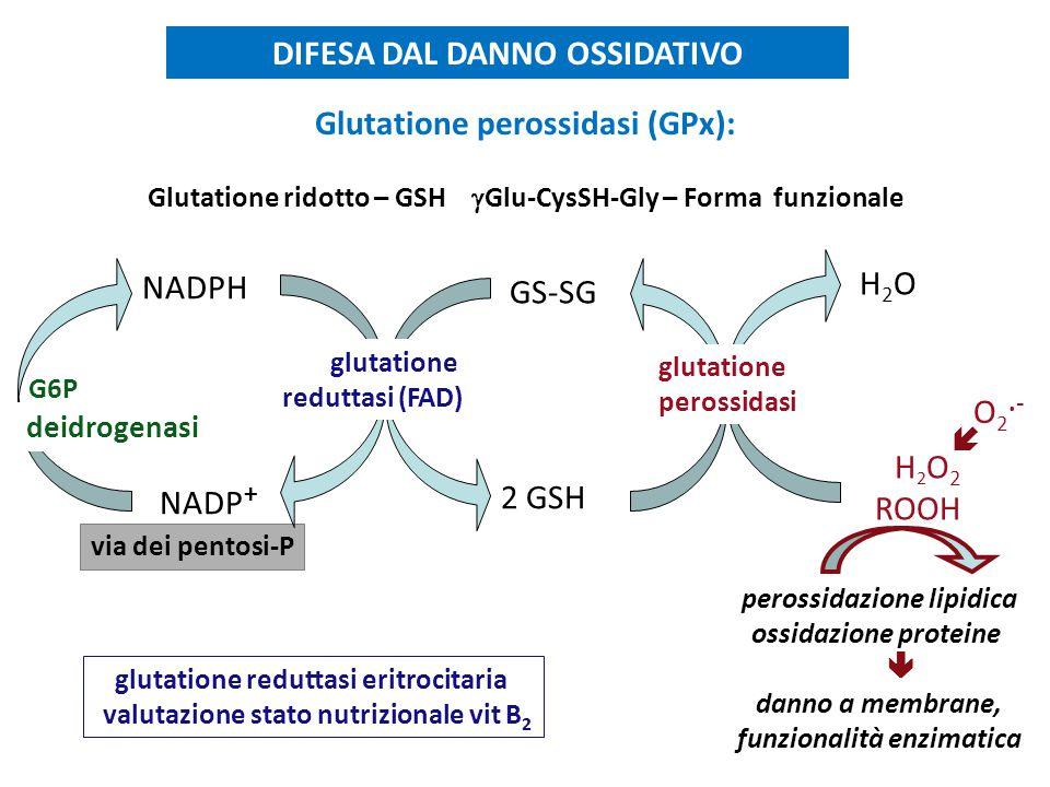 DIFESA DAL DANNO OSSIDATIVO Glutatione perossidasi (GPx):